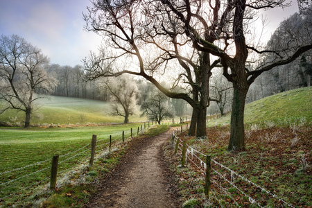 Walking path framed by fences leading into a beautiful rural landscape in winter, moody soft light