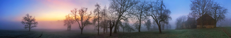 Panoramic rural landscape with colorful sky at dawn, silhouettes of bare trees in fog Imagens