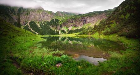 Dreamy landscape: a beautiful mountain lake surrounded by green vegetation  at dawn, with overcast soft light