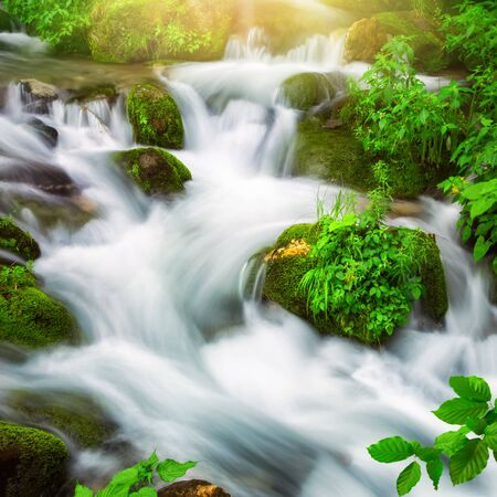 Streams of water beautifully cascading down a wild small river through a mountain forest, square format and long exposure for abstract flow Archivio Fotografico