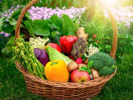 Colorful and appetizing vegetables and fruits in a nice old-fashioned basket in the garden Reklamní fotografie