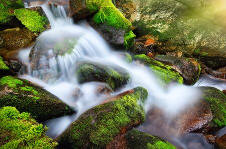 Mountain forest creek cascading and flowing through moss-grown rocks