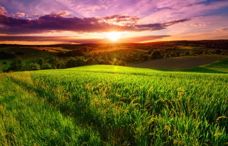 Sunset scenery on a green field with forests and hills on the horizon and the sky painted in gorgeous dramatic and emotional colors Reklamní fotografie