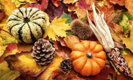 Autumn decoration arranged with natural items such as colorful dry leaves, chestnuts, ornamental pumpkins and cones Reklamní fotografie