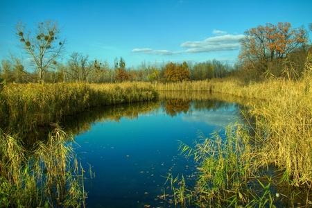 Autumn landscape Stock Photo - 8984398