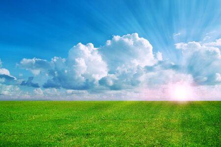 Beautiful landscape. Grass meadow under cloudy sky. Stock Photo - 11244264