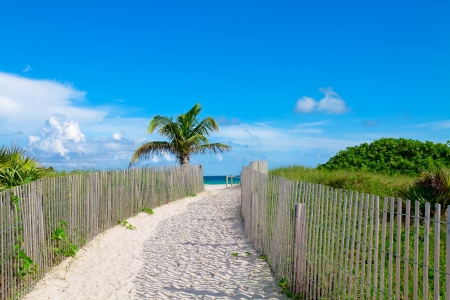 Sandy path leading to the beach in Miami photo