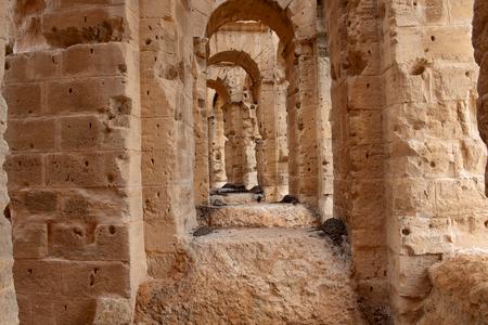 Ruins of the colosseum El Djem,Tunisia