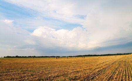 Field with haystacks under cloudy sky