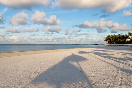 Funny umbrella shaddows on a sandy beach in Mauritius