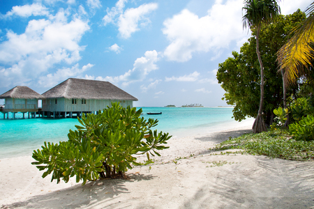 Beach on Maldives island with beautiful sky and ocean