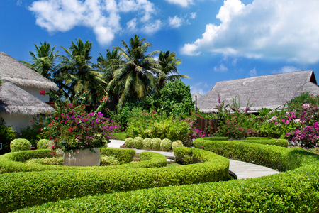 View of nice tropic luxury garden with pathway to bungalows Reklamní fotografie