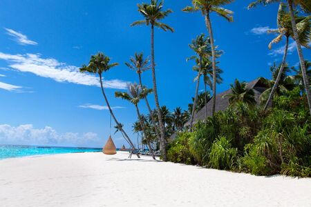Beautiful tropical Maldives beach with swings on coconut palms. Luxury vacation