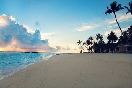 Palm tree sandy beach sunset on Maldives resort