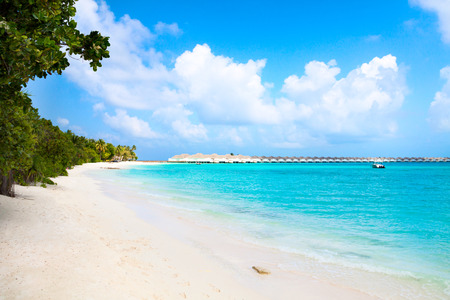Wide sandy beach on a tropical island in Maldives Reklamní fotografie - 73024969