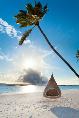 Swing hanging on coconut palm at tropical beach on Maldives island Reklamní fotografie