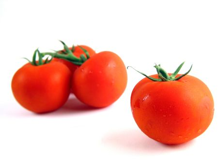 intended: Isolated still of tomatoes with focused one right (slight over-exposure intended)