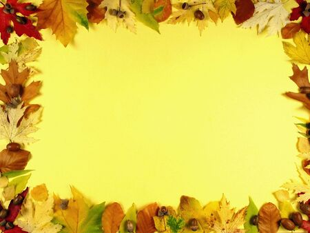 Beautiful frame of autumn leafs on warm yellow background photo