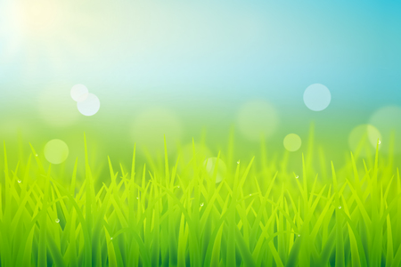 spring grass realistic illustration with dew drops and bokeh effect