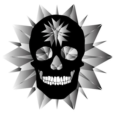 human remains skeleton of the skull bones