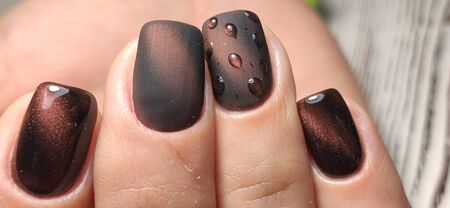 Glamorous luxurious brown crocodile manicure with gold plated women's nails closeup.