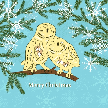 Christmas card with snowflakes and owls Vector