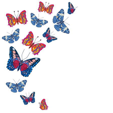 Card with colorful butterflies