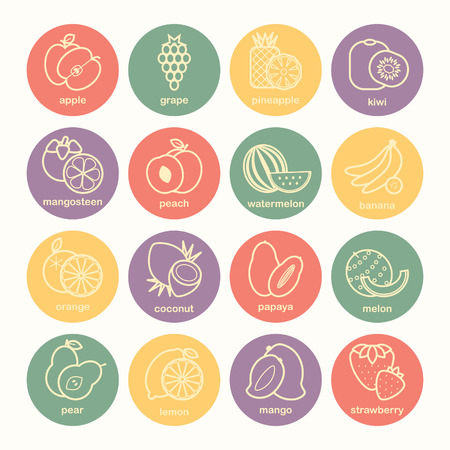 Set of 16 fruit icons, vector illustration