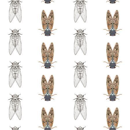 Cicada mosquito seamless pattern