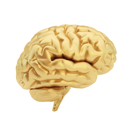 Golden brain isolated on a white background. 3d illustration. Standard-Bild