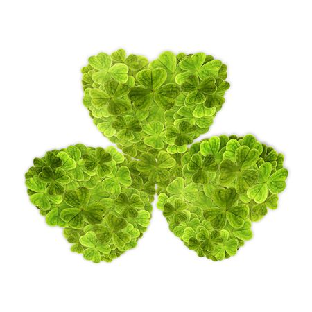big clover leaf from small leafs Stock Photo - 3748271