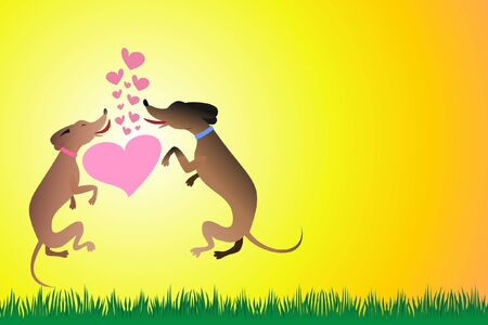 the kiss of two jumping dogs  photo