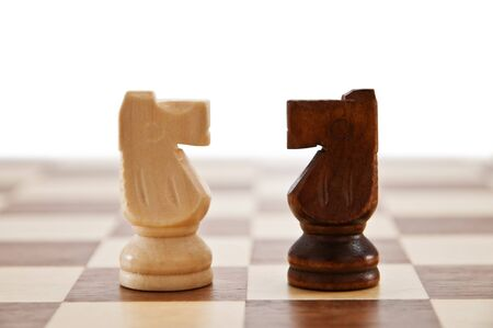 two horse on chessboard isolated photo