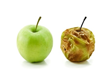 rotten: two apples isolated on white
