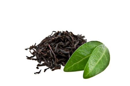black tea with leaf isolated on white background photo