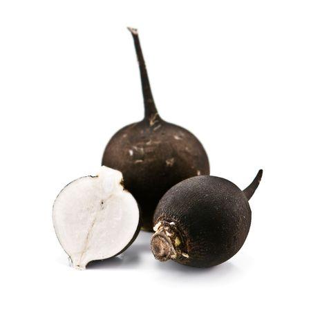 radish: black turnip isolated on white