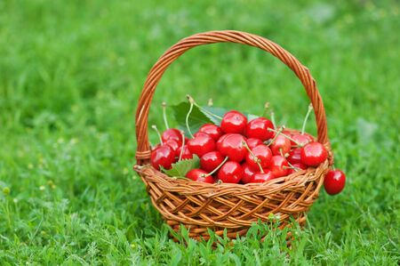 cherry in basket close up Stock Photo - 5098222
