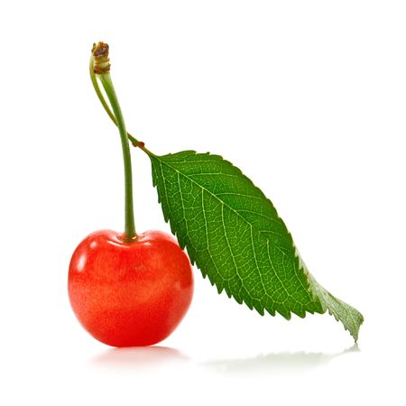 ripe red cherry with leaf isolated photo