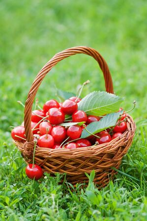 cherry in basket close up Stock Photo - 5276428