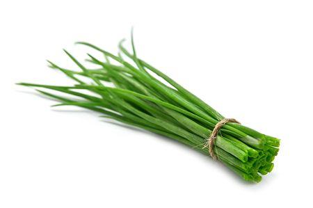 copula: copula of green onion isolated on white