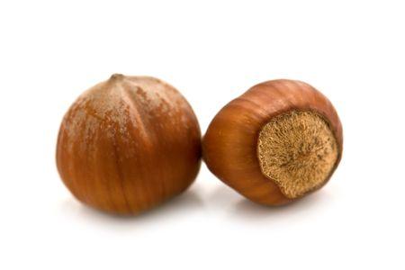 Two hazelnut on white background  photo