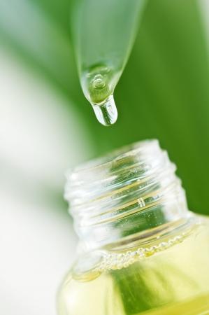 Drop von Leaf in Flasche  Standard-Bild