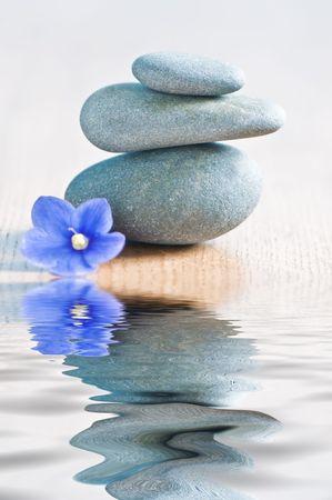 terapias alternativas: portarretrato de piedra y la flor de Spa