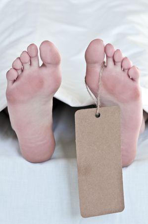 morgue: dead body feets with label