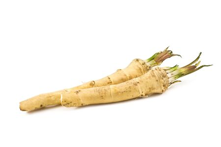 two roots of horse radish isolated Stock Photo - 6227703