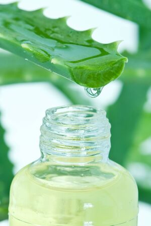 drop from leaf to bottle Stock Photo - 6458100