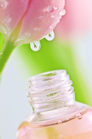 Drop von Tulip in Flasche  Standard-Bild
