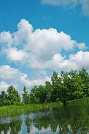 beauty lake in summer forest photo