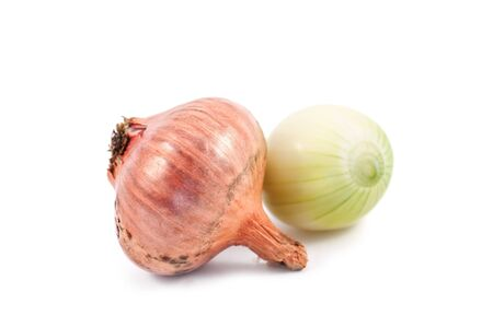 two onion isolated on white background photo