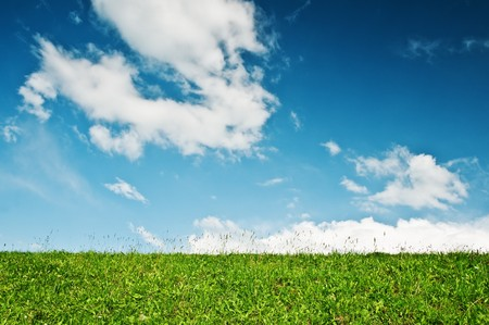 green meadow and cloudy sky Stock Photo - 7097927